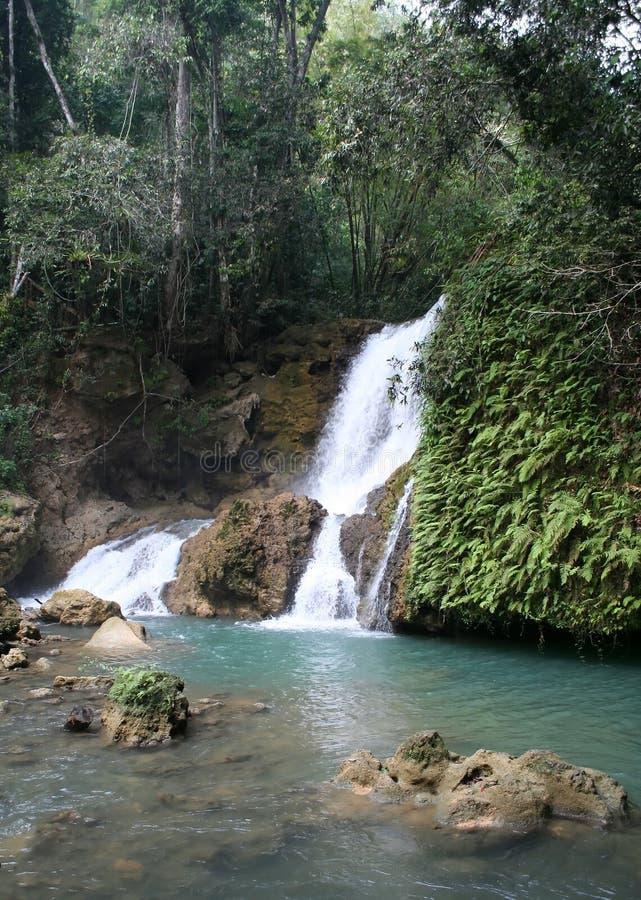 Cachoeira do rio de YS fotografia de stock