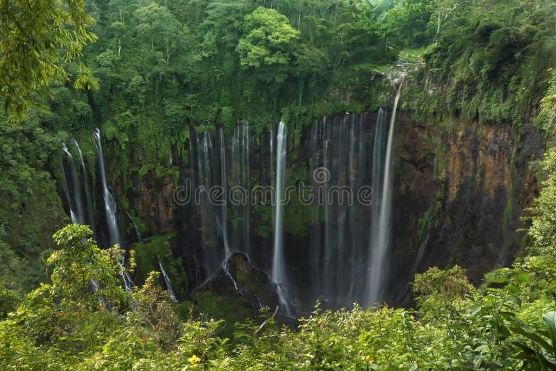Cachoeira do sewu de Coban, Lumajang, Jawa, Indonésia foto de stock