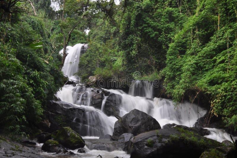 Cachoeira Doi Inthanon Chiang Mai Thailand do jung de Rak fotografia de stock royalty free