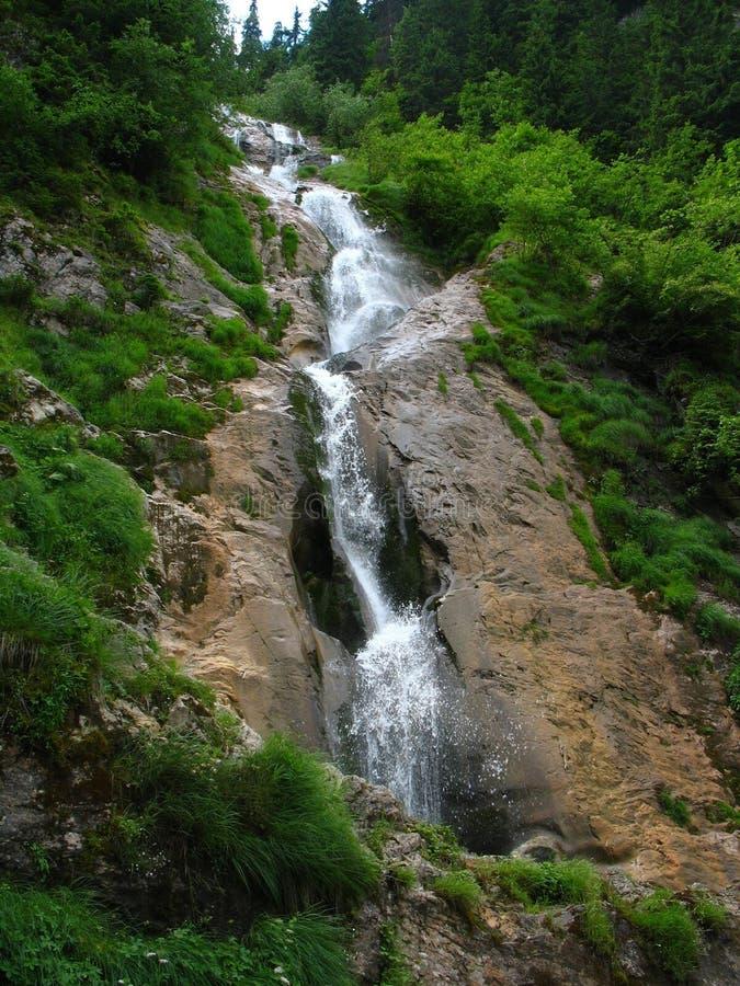Cachoeira dos cavalos foto de stock royalty free