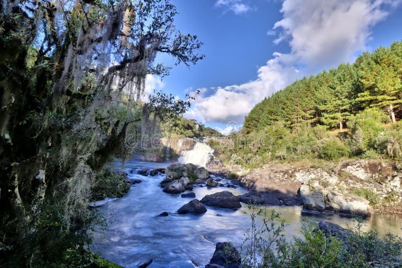 Cachoeira dos Venancios 免版税库存图片
