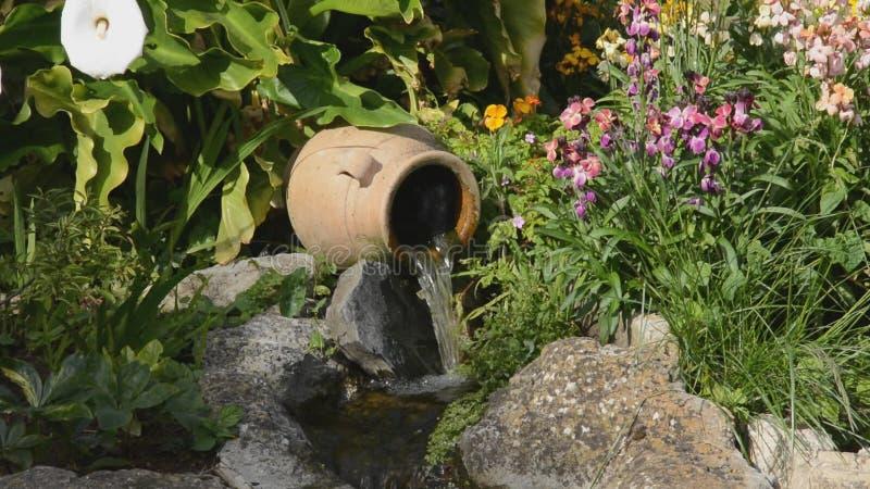 Cachoeira e birdsong filme