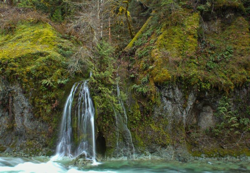 Cachoeira e caverna do véu da floresta imagens de stock royalty free