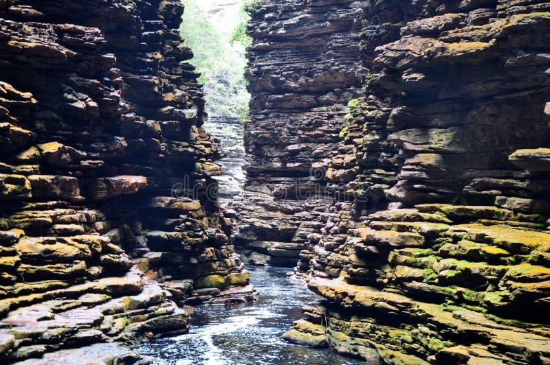 Cachoeira em Bahia Brazil fotos de stock