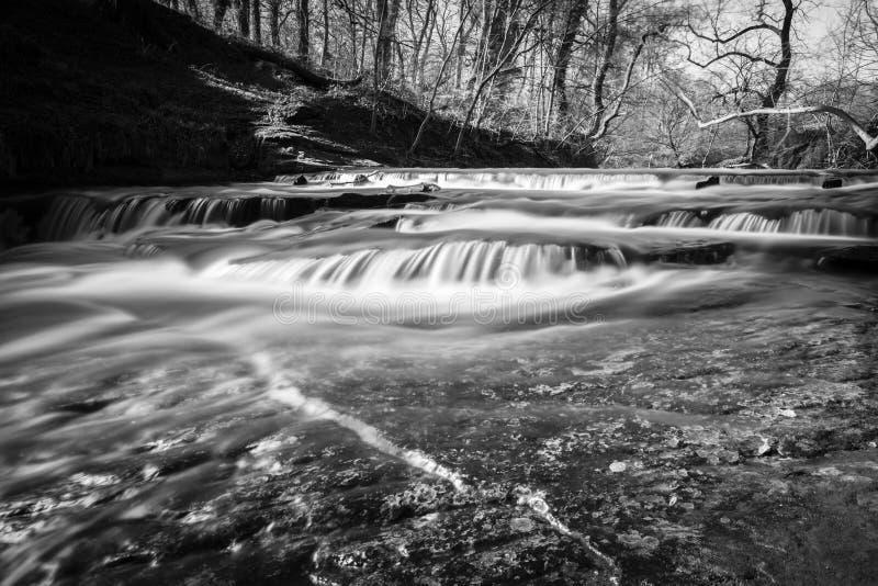 Cachoeira em Holywell Dene Northumberland Reino Unido fotografia de stock royalty free