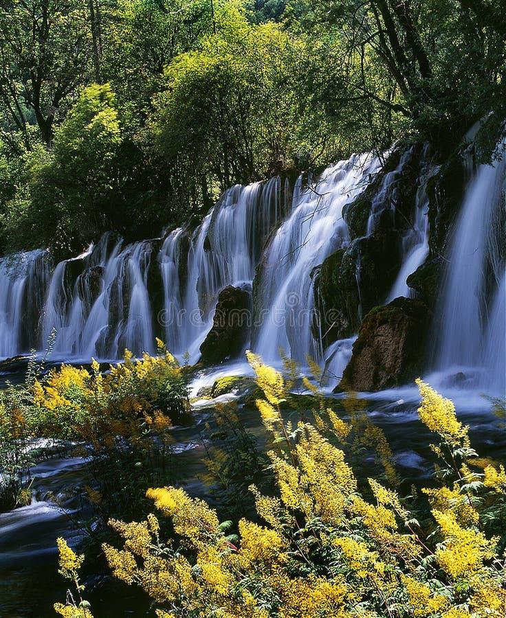 Cachoeira em Jiuzhaigou fotos de stock royalty free