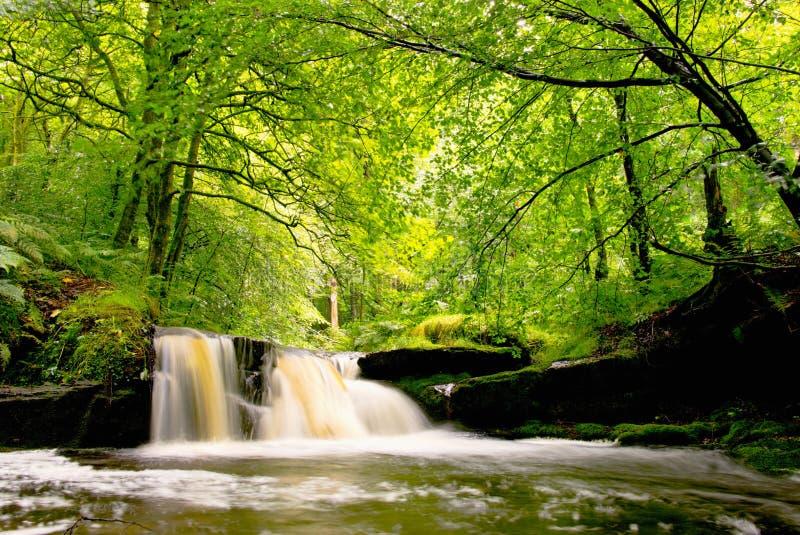 Cachoeira em Lancashire foto de stock