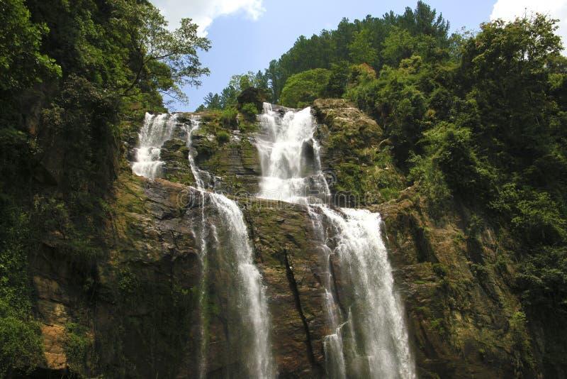 Cachoeira em Nuwara Eliya Sri Lanka fotografia de stock