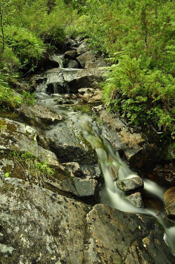 Cachoeira em s em Rollonhytte Vardane, Tverrfjellet, mais og Romsdal, Noruega 2013 fotos de stock royalty free