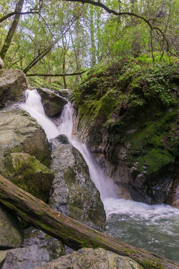 Cachoeira em Sugarloaf Ridge State Park, vale de Sonoma, Califórnia fotografia de stock