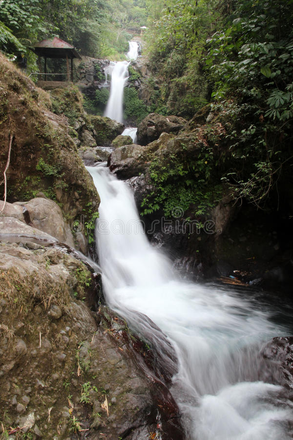 Cachoeira em uma floresta Bali fotos de stock royalty free