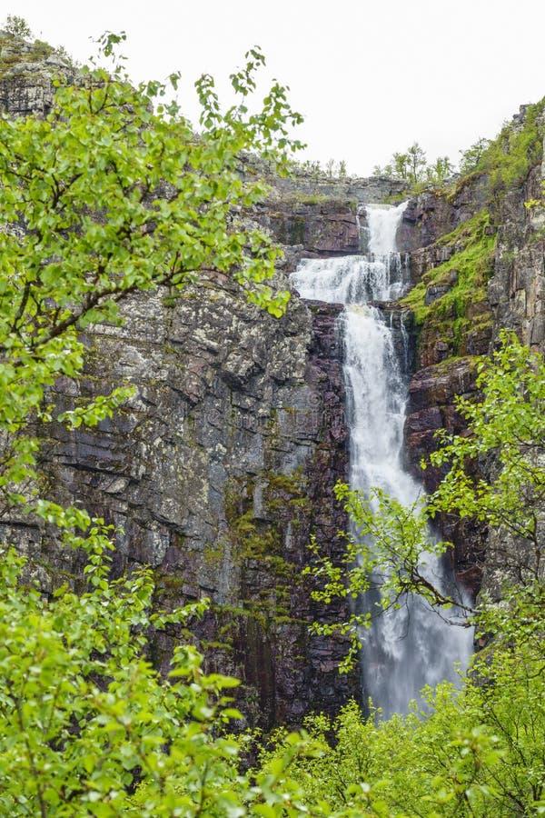 Cachoeira em uma montanha com ramos de árvores no primeiro plano imagens de stock royalty free