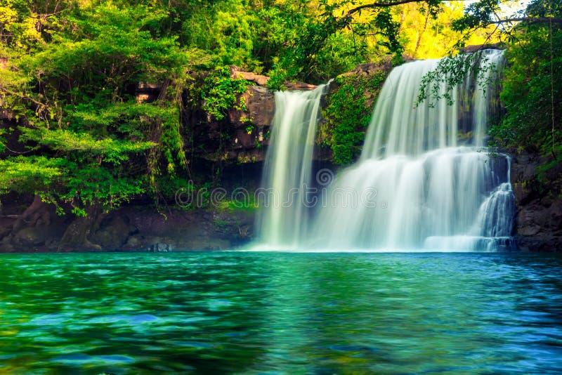 Cachoeira escondida na selva tropical fotografia de stock royalty free