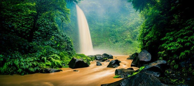 Cachoeira escondida na selva tropical fotos de stock