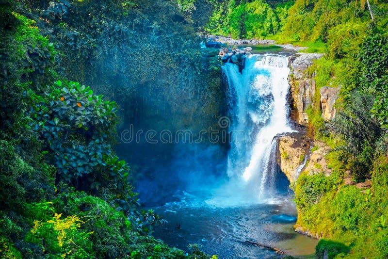 Cachoeira escondida na selva tropical Cachoeira majestosa em t imagem de stock royalty free