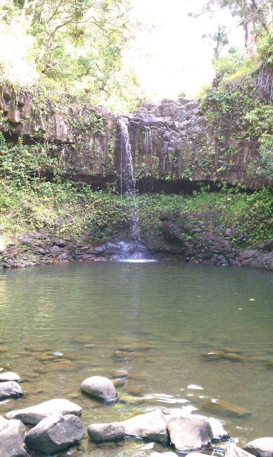 Cachoeira havaiana fotos de stock