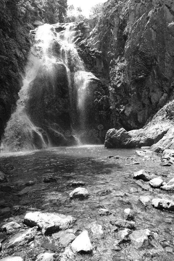 Cachoeira Imagem da cachoeira magnífica que flui das profundidades da cachoeira de Sudusen da floresta Yalova, Turquia imagens de stock royalty free
