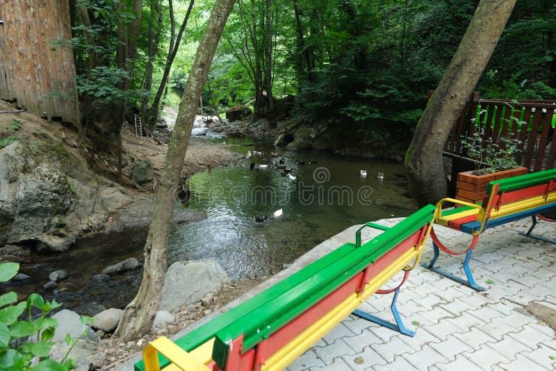 Cachoeira Imagem da cachoeira magnífica que flui das profundidades da cachoeira de Sudusen da floresta Yalova, Turquia fotografia de stock