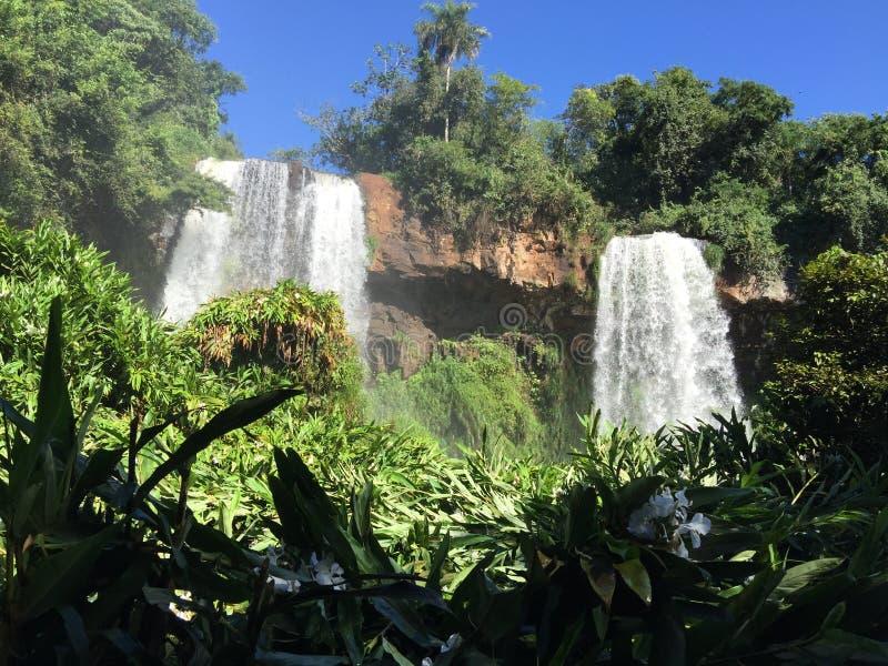 A cachoeira a maior no mundo - lado de Foz de Iguaçu Argentina imagem de stock royalty free