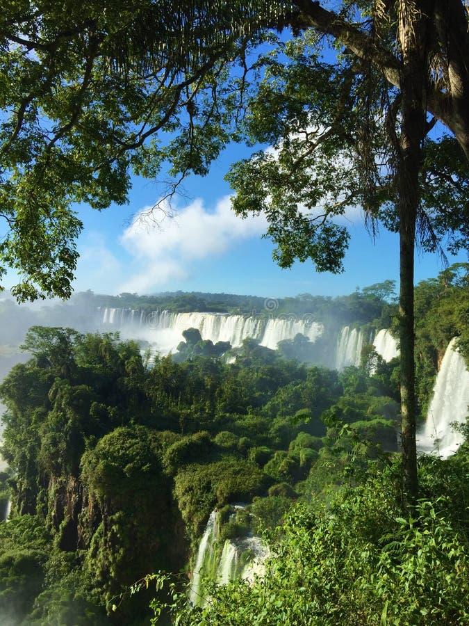 A cachoeira a maior no mundo - lado de Foz de Iguaçu Argentina fotografia de stock