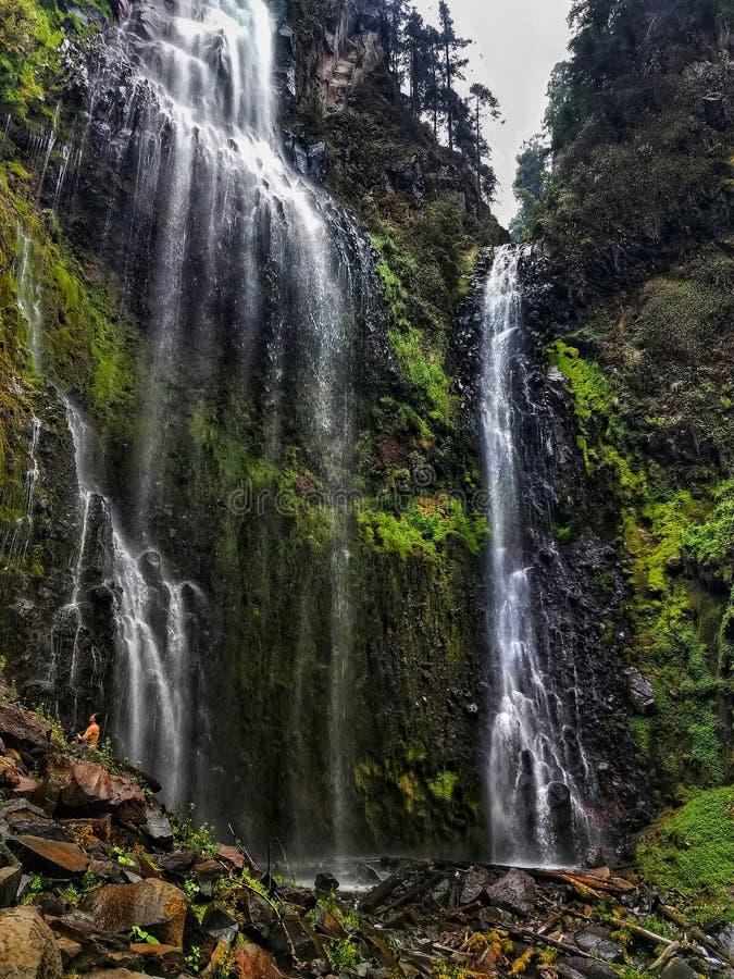 Cachoeira majestosa na floresta úmida de Cidade do México foto de stock royalty free