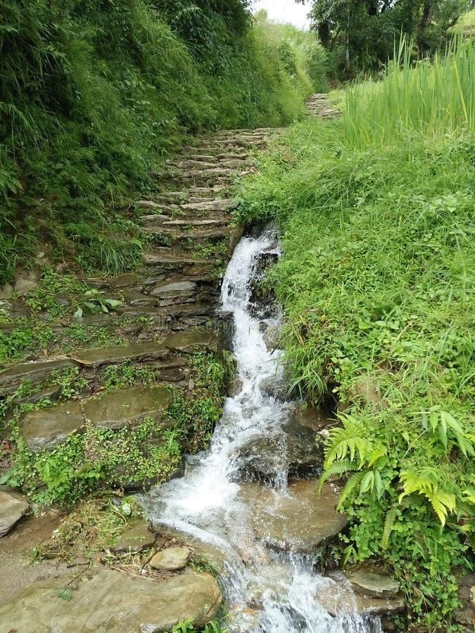 Cachoeira na estrada montanhosa! fotos de stock