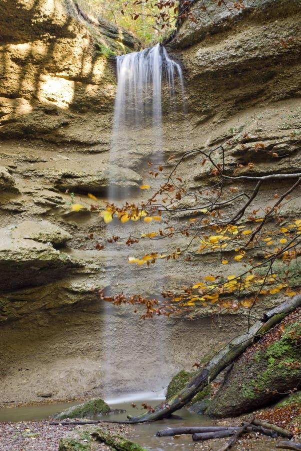 Cachoeira na floresta bávara imagem de stock