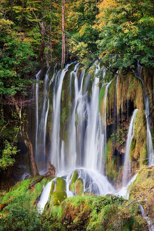Download Cachoeira Na Floresta Do Outono Foto de Stock - Imagem de pitoresco, lago: 16850482
