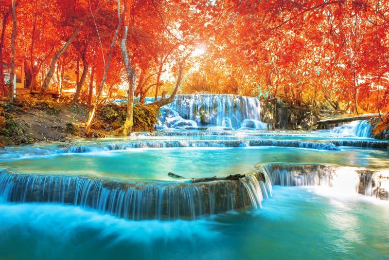 Cachoeira na floresta do outono, nomes imagem de stock royalty free