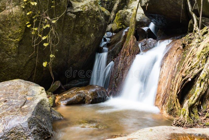 Cachoeira na floresta em Mae Kampong, Chiang Mai, Tailândia fotografia de stock royalty free