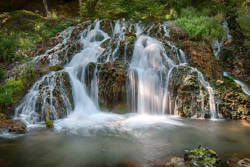 Cachoeira na floresta fl fotos de stock