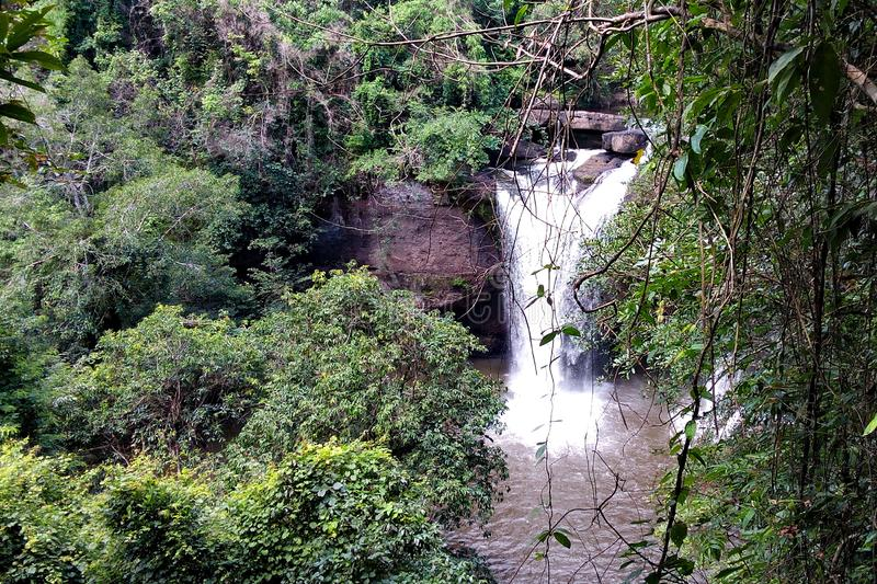 A cachoeira na floresta grande ? calma imagem de stock royalty free