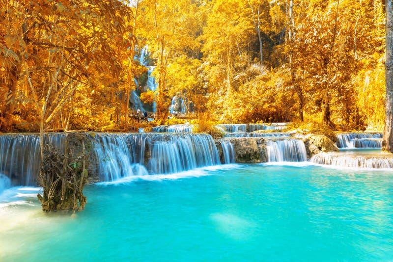 Cachoeira na floresta, nomes Tat Kuang Si Waterfalls em Luang foto de stock royalty free