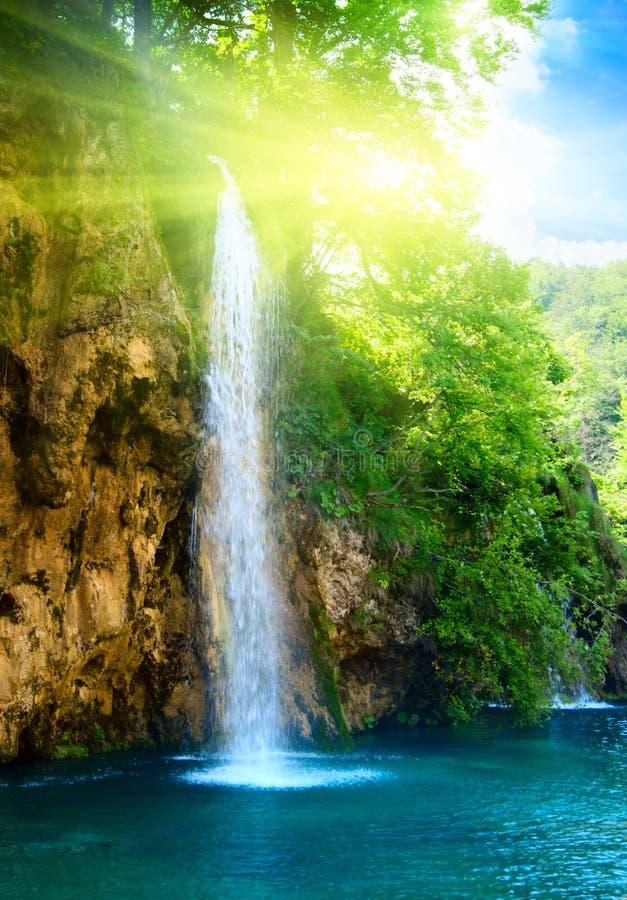Cachoeira na floresta profunda fotos de stock