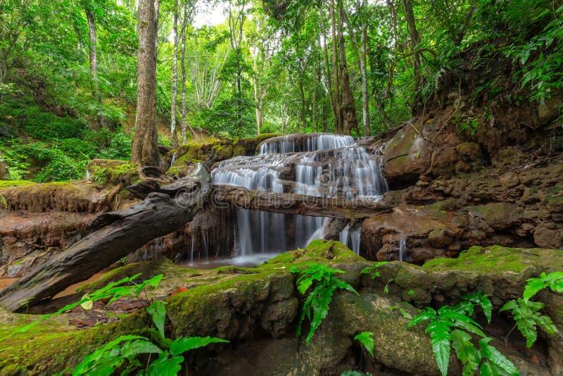 Cachoeira na floresta tropical tropical, Pa Wai Waterfall, Tak Province, Tailândia foto de stock