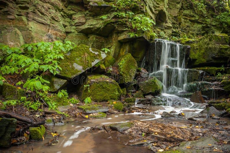 Cachoeira na floresta verde fotografia de stock royalty free