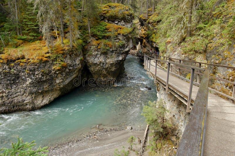 Cachoeira na garganta de Johnston imagem de stock royalty free