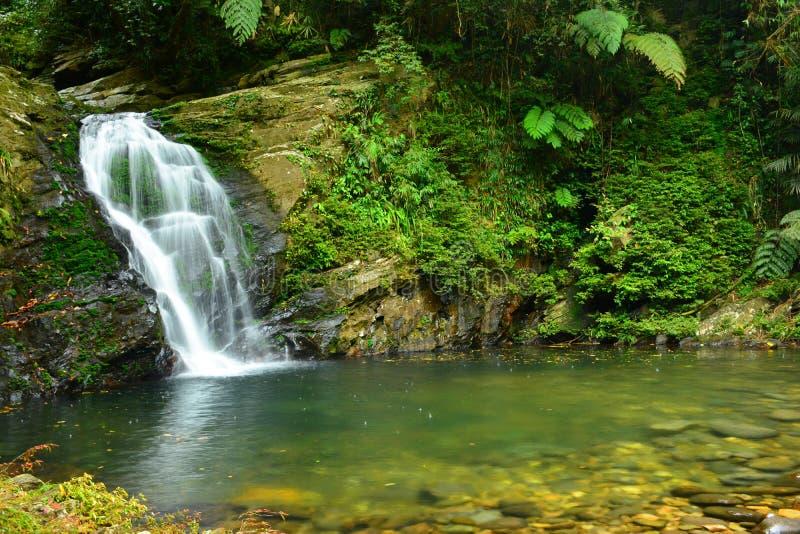 Cachoeira na montanha de Bach miliampère - Vietname imagens de stock