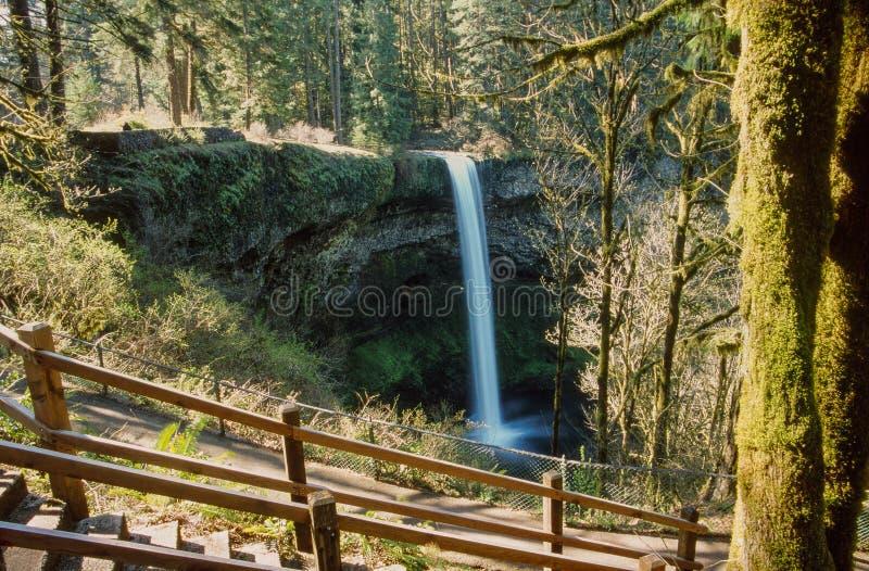 A cachoeira na prata cai parque estadual de Oregon imagens de stock