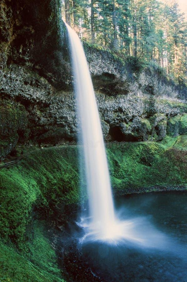 A cachoeira na prata cai parque estadual de Oregon imagens de stock royalty free