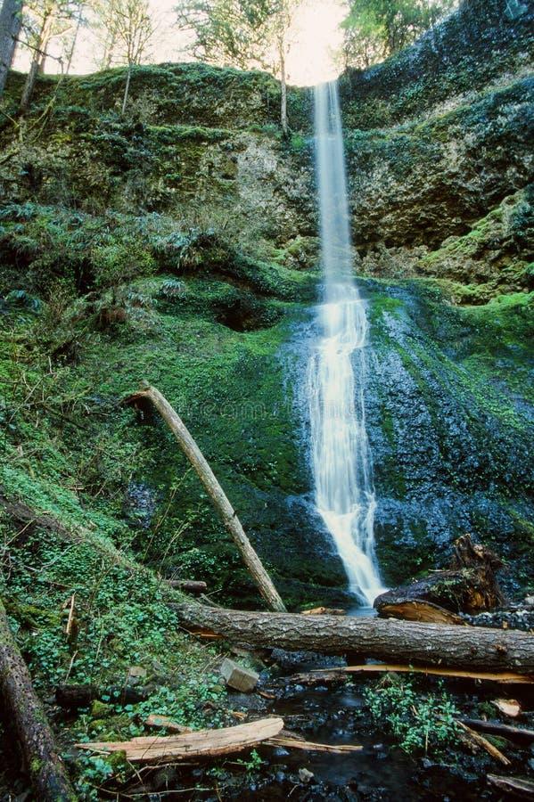A cachoeira na prata cai parque estadual de Oregon fotos de stock