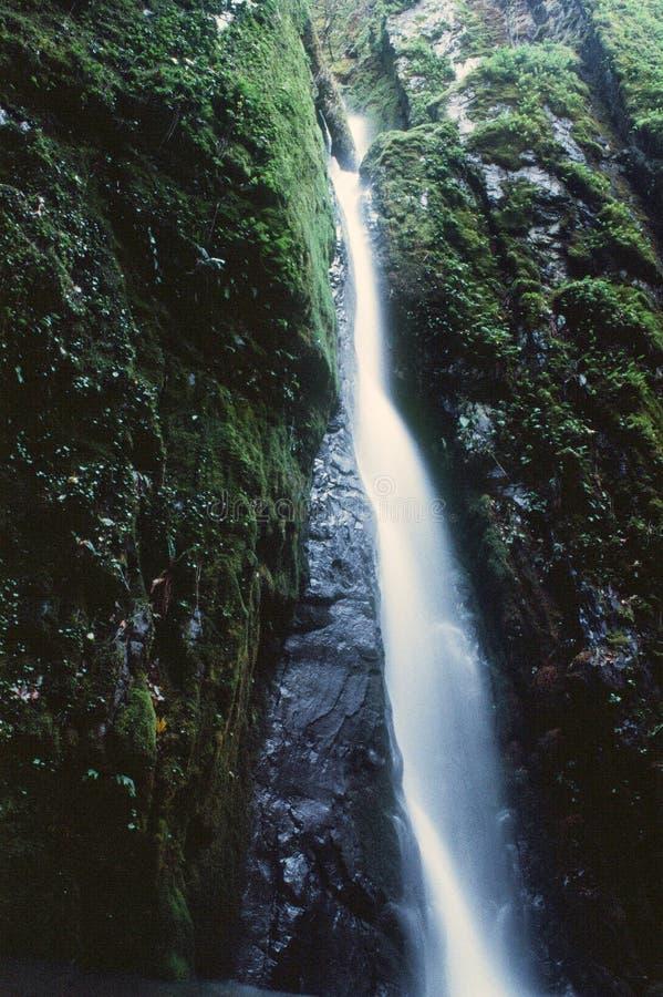 A cachoeira na prata cai parque estadual de Oregon fotos de stock royalty free