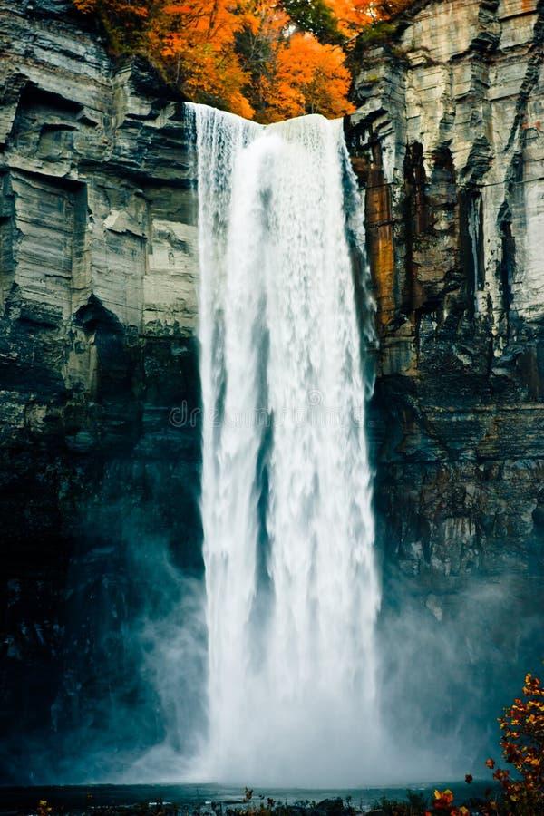 Cachoeira na queda foto de stock royalty free