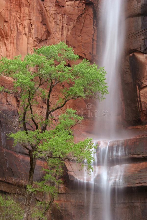 Cachoeira na rocha Weeping imagens de stock royalty free