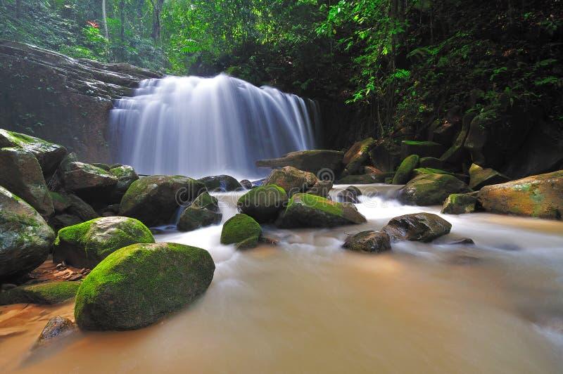 Cachoeira na selva de Bornéu foto de stock