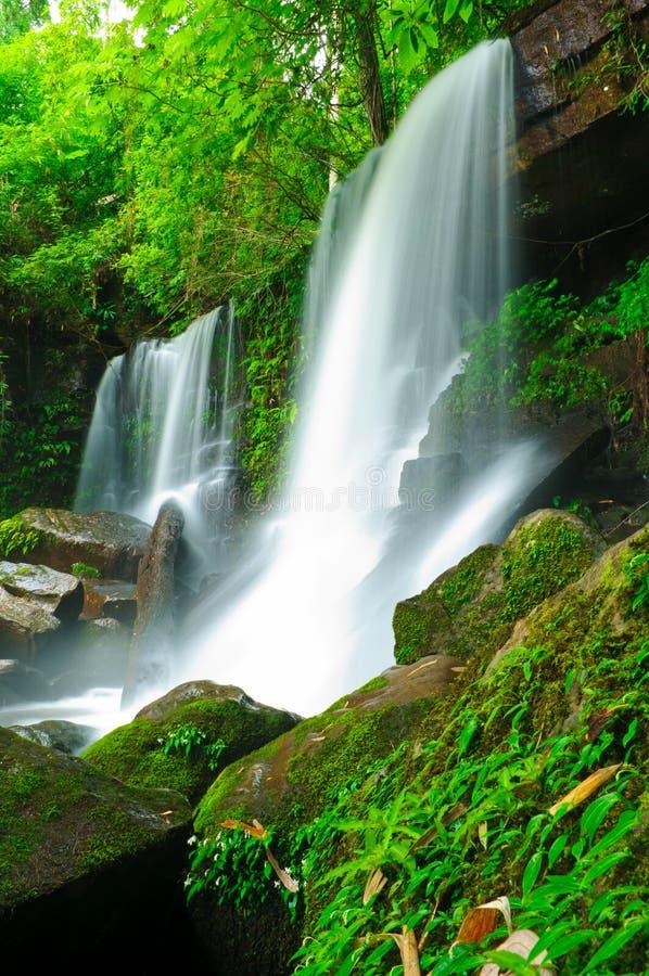 Cachoeira na selva, Loei, Tailândia imagens de stock