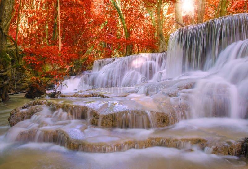 Cachoeira na selva profunda da floresta tropical (Huay Mae Kamin Waterfall) imagem de stock