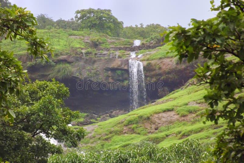 Cachoeira natural cercada pela vegetação verde luxúria fotos de stock royalty free