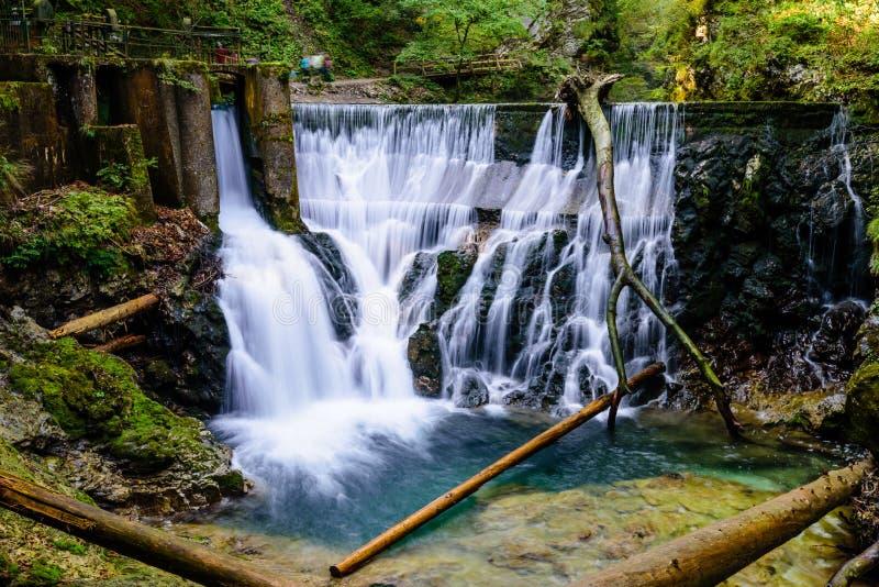 Cachoeira no desfiladeiro de Vintgar foto de stock