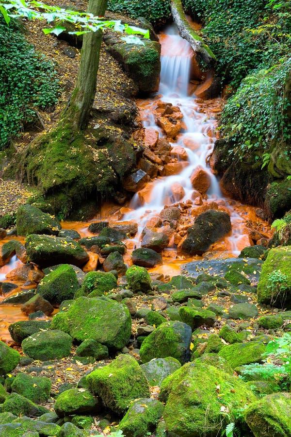 Cachoeira no outono, folhas coloridas na terra imagem de stock